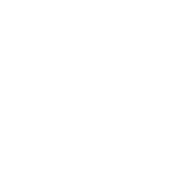 domain crawler_icon globe_white